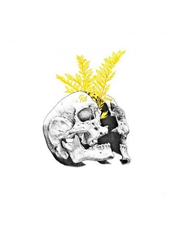 Lámina Re-Born - Javier Rubín