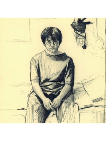 Lámina Harry Potter - Belén Diz