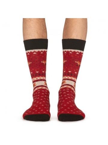 Calcetines Winter Fox rojo - Jimmy Lion