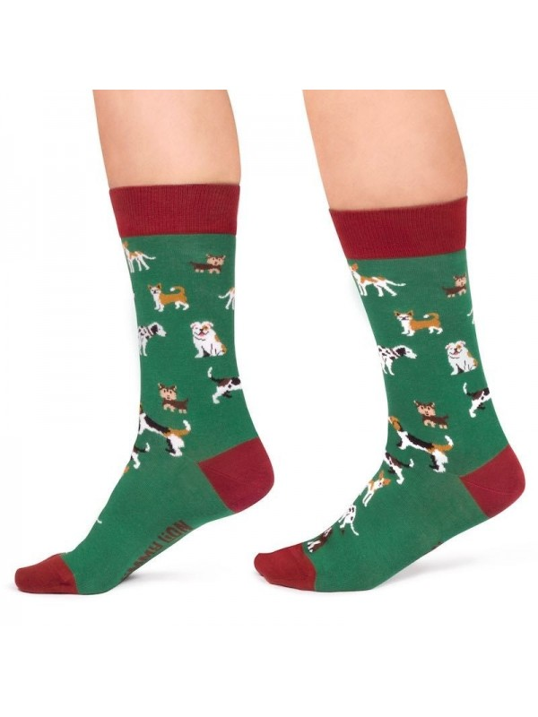 Calcetines Dogs green - Jimmy Lion